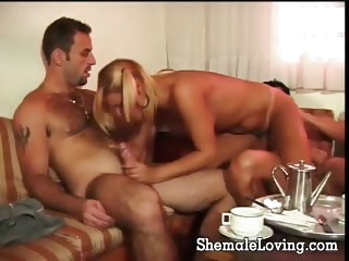blowjob (shemale),group sex (shemale),shemales (shemale)