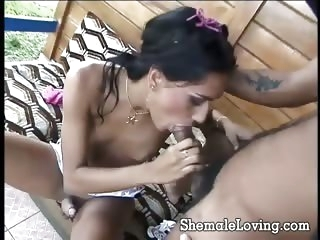 blowjob (shemale),guy fucks shemale (shemale),shemales (shemale)